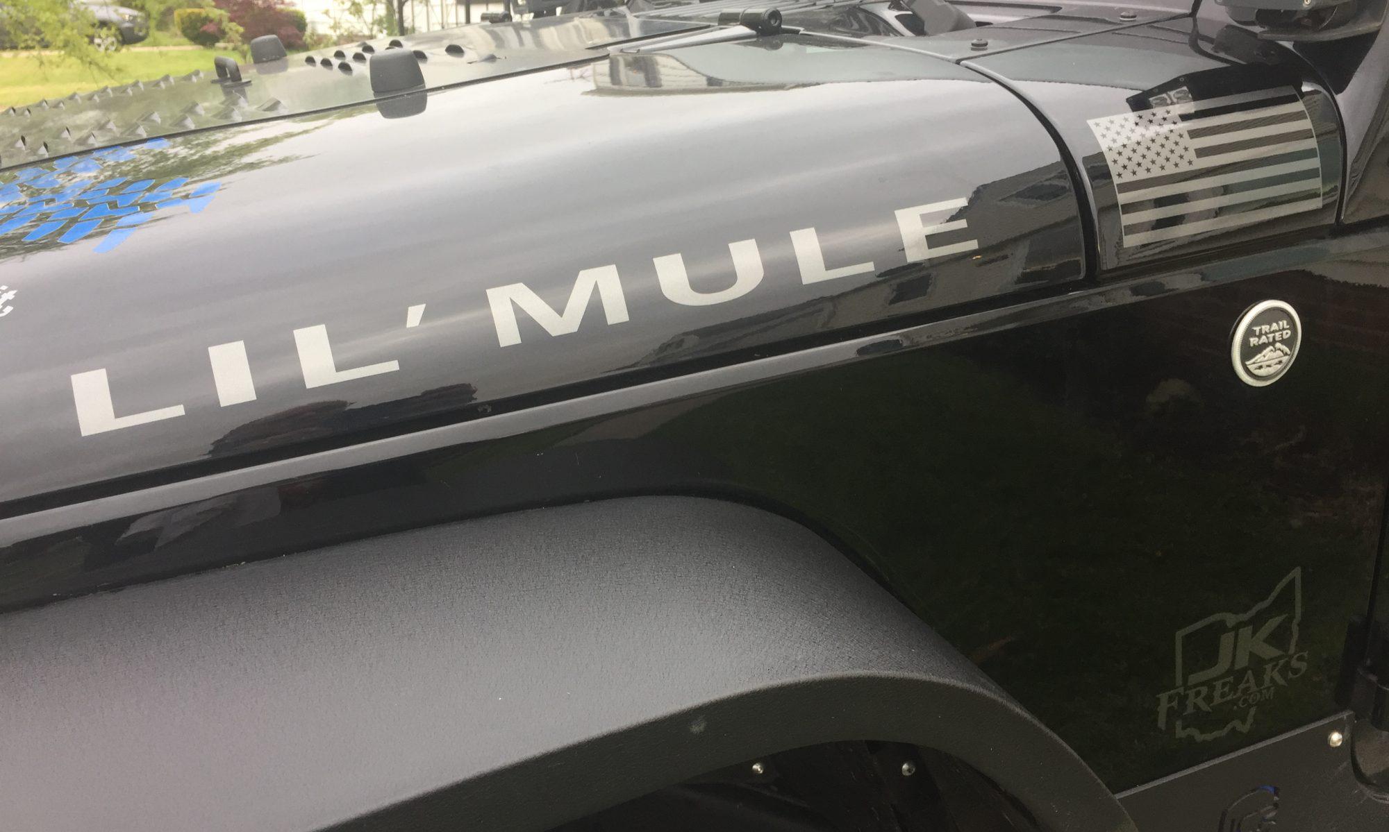 My Lil' Mule
